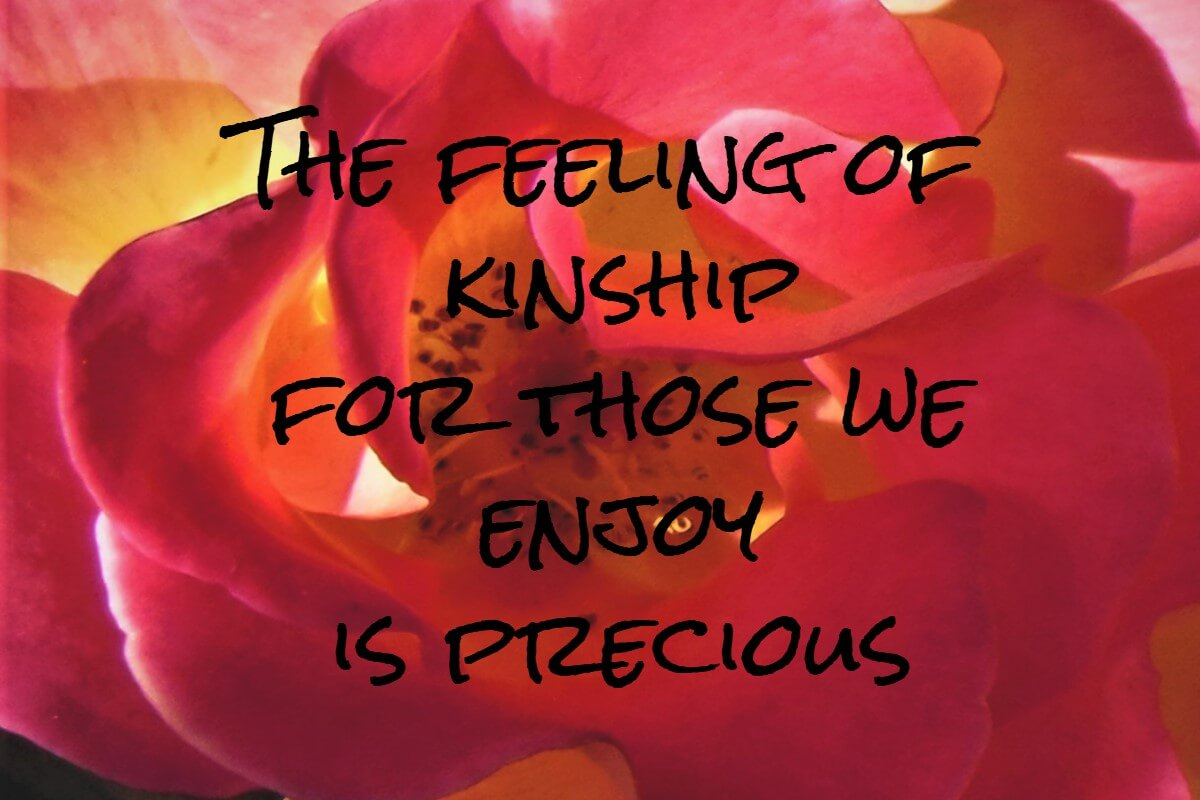 The feeling of kinship for those we enjoy is precious